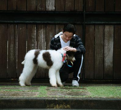 Luxuri_Pets_065