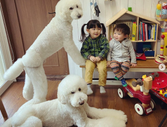 photo-of-two-young-children-sitting-in-a-room-filled-with-toys-next-to-two-fluffy-white-poodle-dogs